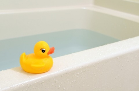 アヒルとお風呂の画像