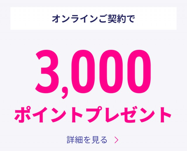 オンラインで3.000ポイント